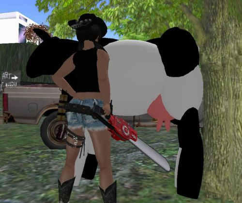 cow and chainsaw